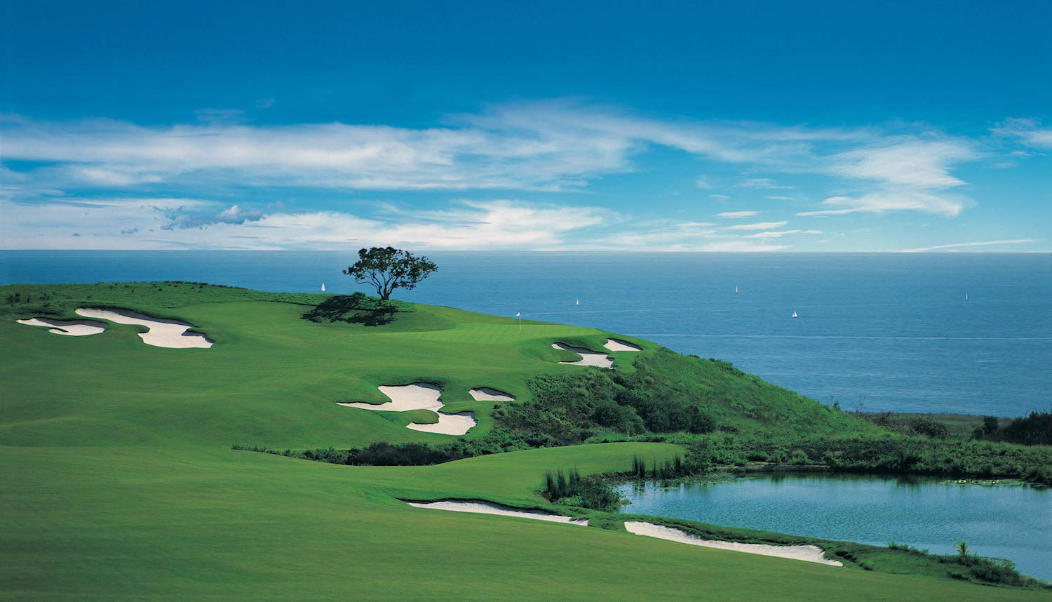 For A Good Cause Pelican Hill