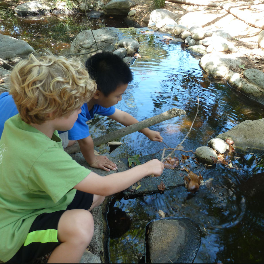 Top Five things little naturalists