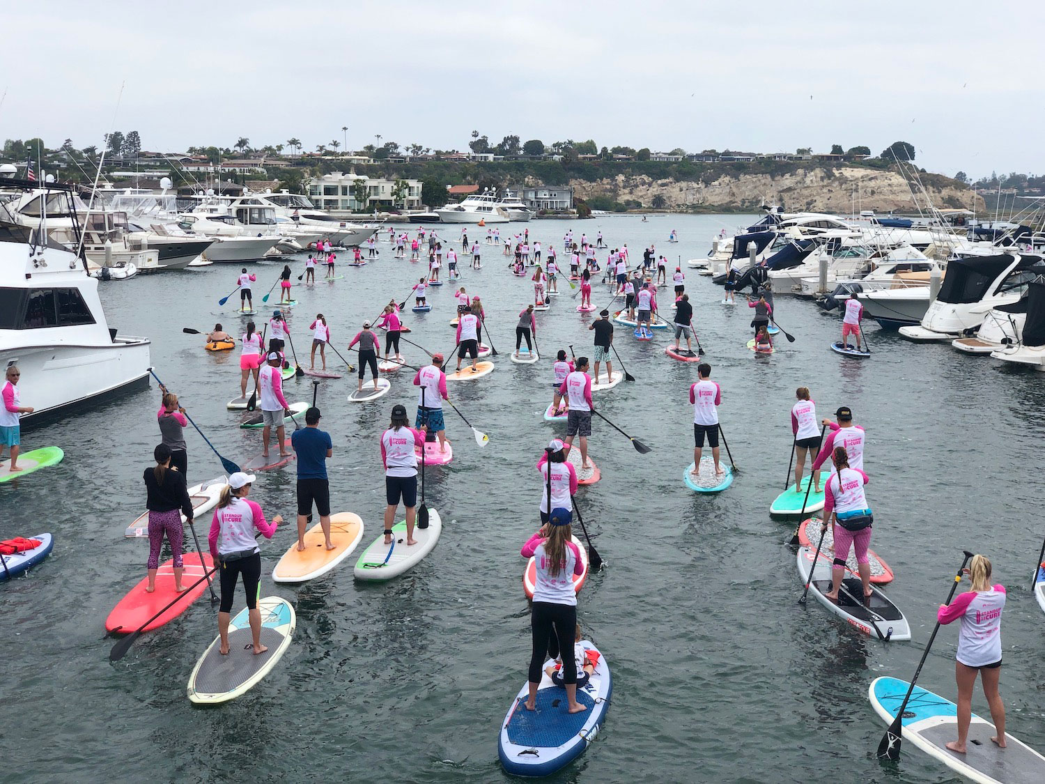 Standup for the Cure paddleboarders